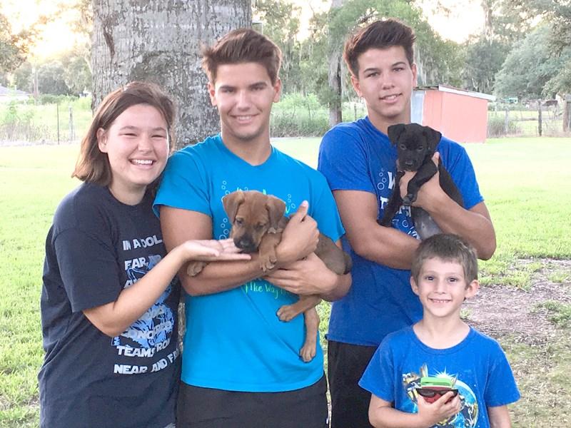 Wharton County SPOT | Wharton, TX | Adopt a Pet